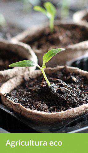 Productos de Agricultura Ecológica