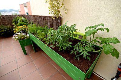 Mesas de Cultivo en Huerto Urbano